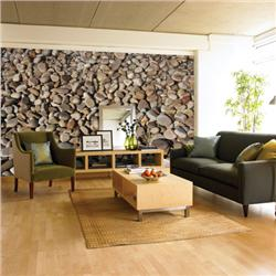 Environmental graphics pebbles wall mural for Environmental graphics wall mural