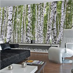 Environmental graphics birches wall mural for Environmental graphics wall mural