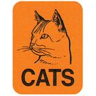 Image of Brodart Cats Classification Labels (250)