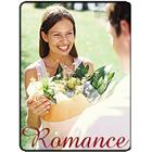Image of Brodart Romance Classification Picture Labels